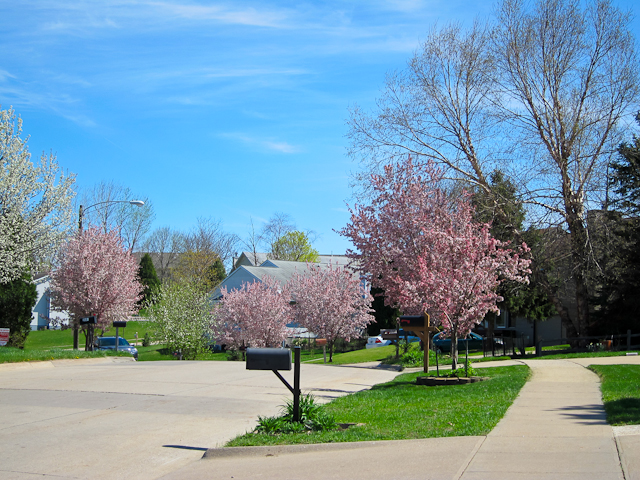 Spring in Coralville IA